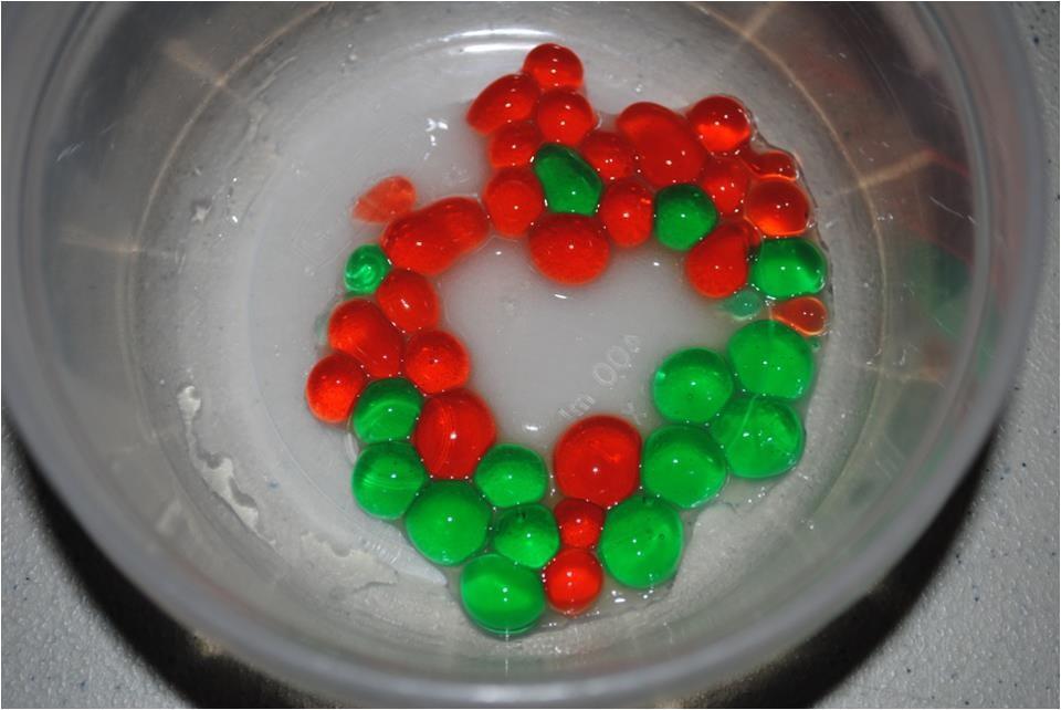 Activité familiale scientifique : Les mini-gastronomes !